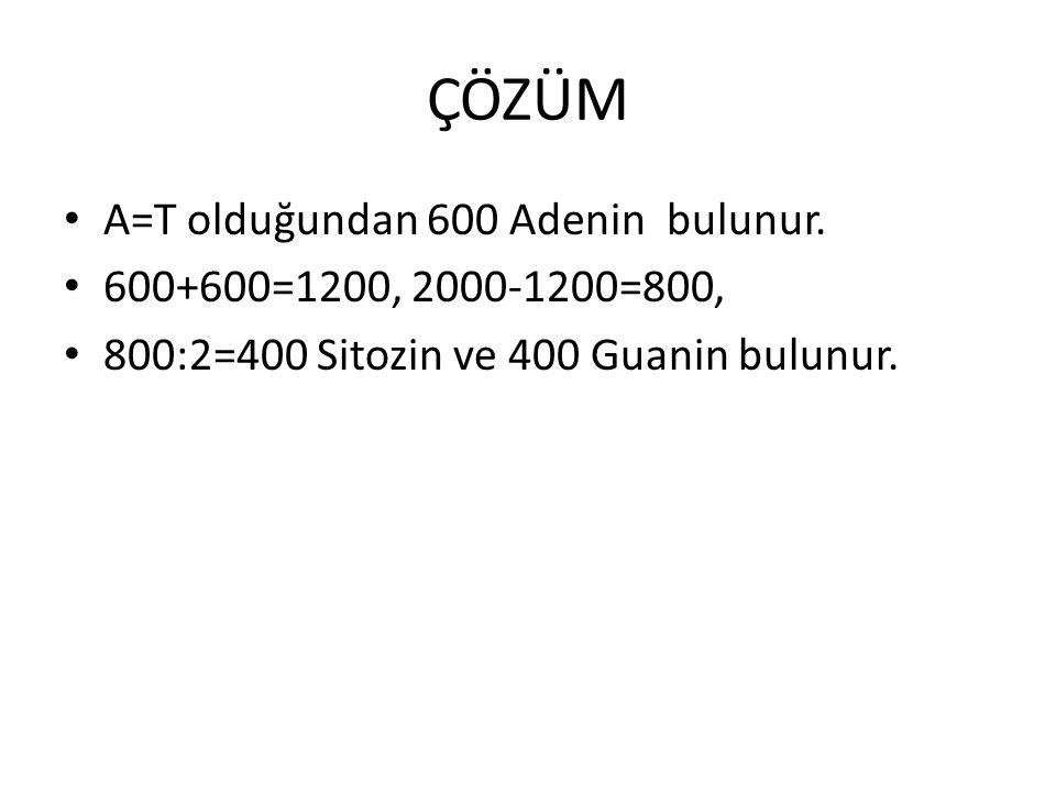 ÇÖZÜM A=T olduğundan 600 Adenin bulunur. 600+600=1200, 2000-1200=800, 800:2=400 Sitozin ve 400 Guanin bulunur.