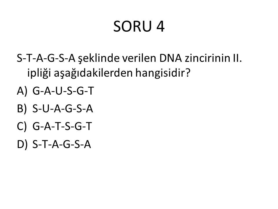 SORU 4 S-T-A-G-S-A şeklinde verilen DNA zincirinin II. ipliği aşağıdakilerden hangisidir? A)G-A-U-S-G-T B)S-U-A-G-S-A C)G-A-T-S-G-T D)S-T-A-G-S-A