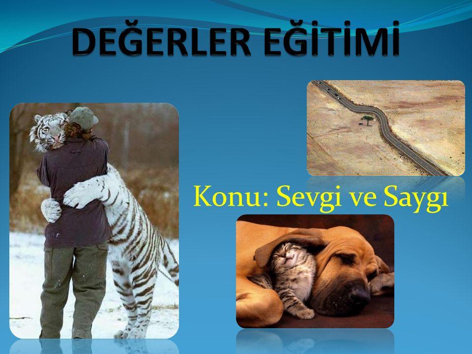 Hayvan Sevgisi Hayvan sevgisi, hiçbir sevgiye benzemez, Çünkü bunda; minnet duygusu, riya yoktur, Evet, bunda gösteriş, riya, bencillik yoktur.