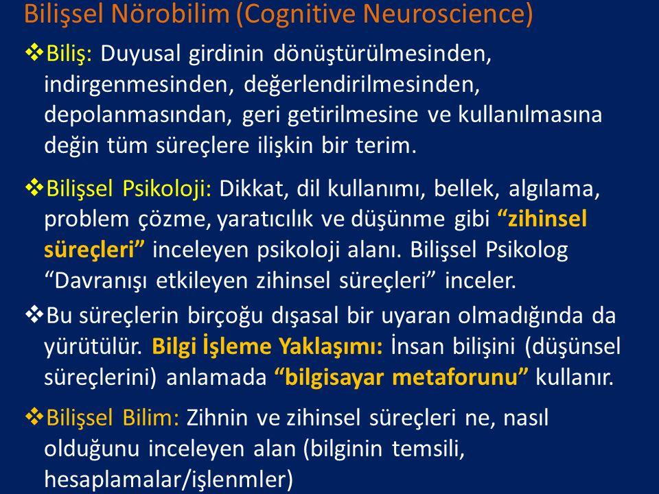 Bilişsel Nörobilim (Cognitive Neuroscience)  Beyindeki nöral ağlar ve devreler tarafından psikolojik işlevlerin nasıl oluşturulduğu/ortaya konduğunu araştırır (fizyolojik psikoloji, bilişsel psikoloji, nöropsikoloji ve nörobilim)  Nöral yapıların bilişi ve duyguları nasıl ortaya çıkardığını inceleyen bilim alanı  Belirli nöral hasarlar sözkonusu olduğunda zihinsel süreçlerde nasıl değişikliklerin meydana geldiğiyle de ilgilenir.