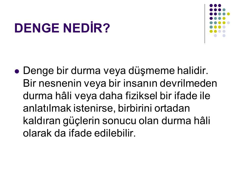 VESTİBÜLER SİSTEM Op.Dr.Serdar S AĞSÖZLÜ