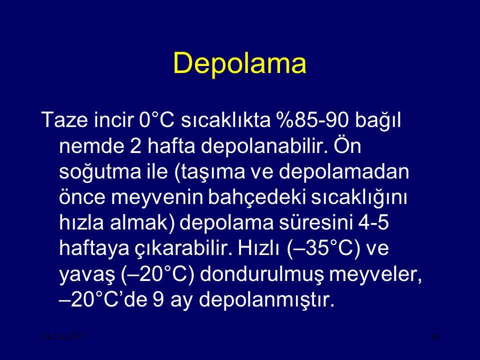 28.10.201546 Depolama Taze incir 0°C sıcaklıkta %85-90 bağıl nemde 2 hafta depolanabilir.