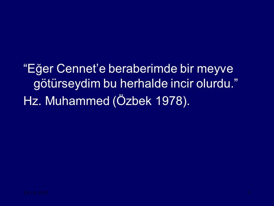 """28.10.20155 """"Eğer Cennet'e beraberimde bir meyve götürseydim bu herhalde incir olurdu."""" Hz. Muhammed (Özbek 1978)."""