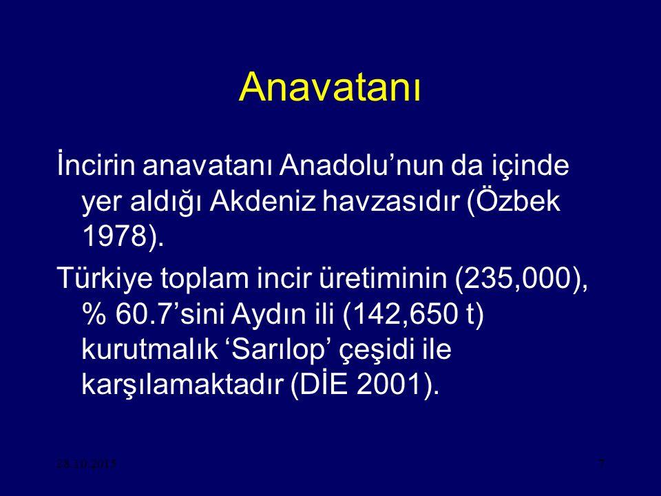 28.10.20157 Anavatanı İncirin anavatanı Anadolu'nun da içinde yer aldığı Akdeniz havzasıdır (Özbek 1978). Türkiye toplam incir üretiminin (235,000), %