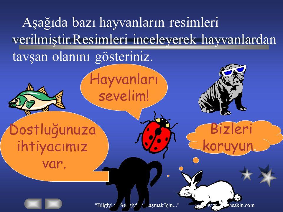 Bilgiyi ve Sevgiyi Paylaşmak İçin... www.ramazansakin.com Aşağıda bazı hayvanların resimleri verilmiştir.Resimleri inceleyerek bu hayvanların adlarını defterinize yazınız.