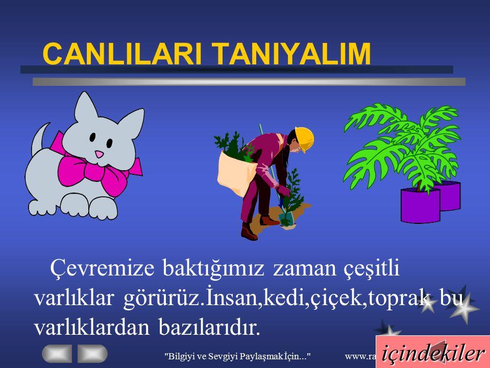 Bilgiyi ve Sevgiyi Paylaşmak İçin... www.ramazansakin.com C-Hayvanların dış görünüşleri farklıdır.