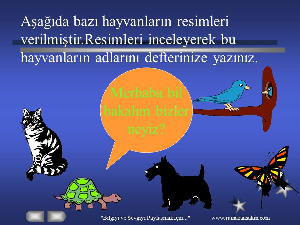 Bilgiyi ve Sevgiyi Paylaşmak İçin... www.ramazansakin.com CANLILARI KORUYALIM Bize birçok yararı olan hayvanları koruyalım ve sevelim.Onlara zarar vermeyelim eziyet etmeyelim.Hayvanlara zarar verici davranışlarda bulunanları uyaralım.