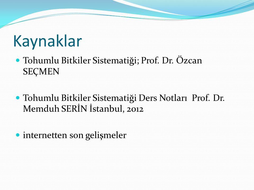 Kaynaklar Tohumlu Bitkiler Sistematiği; Prof. Dr. Özcan SEÇMEN Tohumlu Bitkiler Sistematiği Ders Notları Prof. Dr. Memduh SERİN İstanbul, 2012 interne