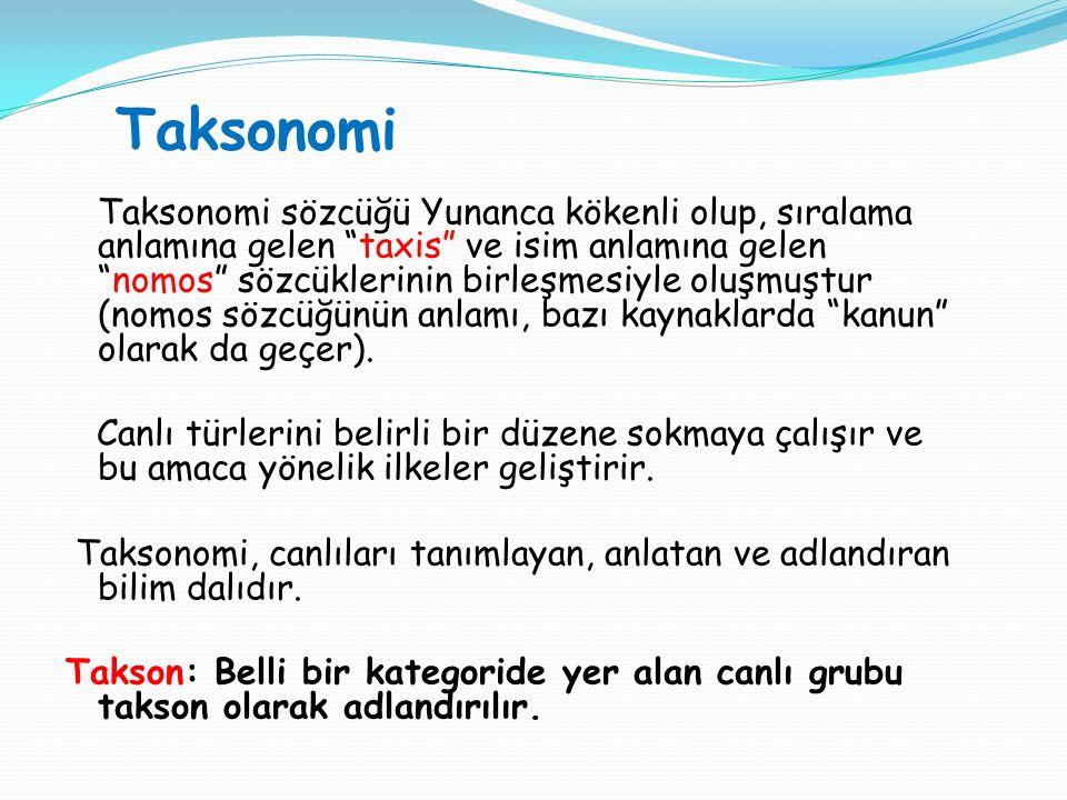 """Taksonomi Taksonomi sözcüğü Yunanca kökenli olup, sıralama anlamına gelen """"taxis"""" ve isim anlamına gelen """"nomos"""" sözcüklerinin birleşmesiyle oluşmuştu"""