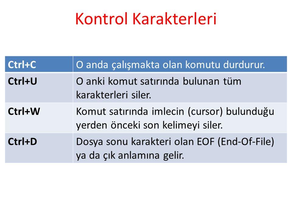 Kontrol Karakterleri Ctrl+CO anda çalışmakta olan komutu durdurur.