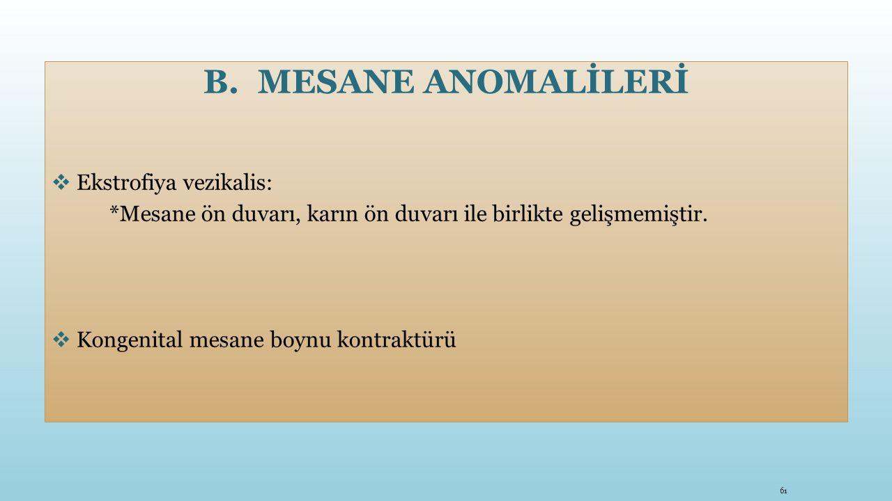 B.MESANE ANOMALİLERİ  Ekstrofiya vezikalis: *Mesane ön duvarı, karın ön duvarı ile birlikte gelişmemiştir.  Kongenital mesane boynu kontraktürü 61