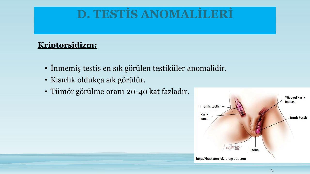 D. TESTİS ANOMALİLERİ Kriptorşidizm: İnmemiş testis en sık görülen testiküler anomalidir. Kısırlık oldukça sık görülür. Tümör görülme oranı 20-40 kat