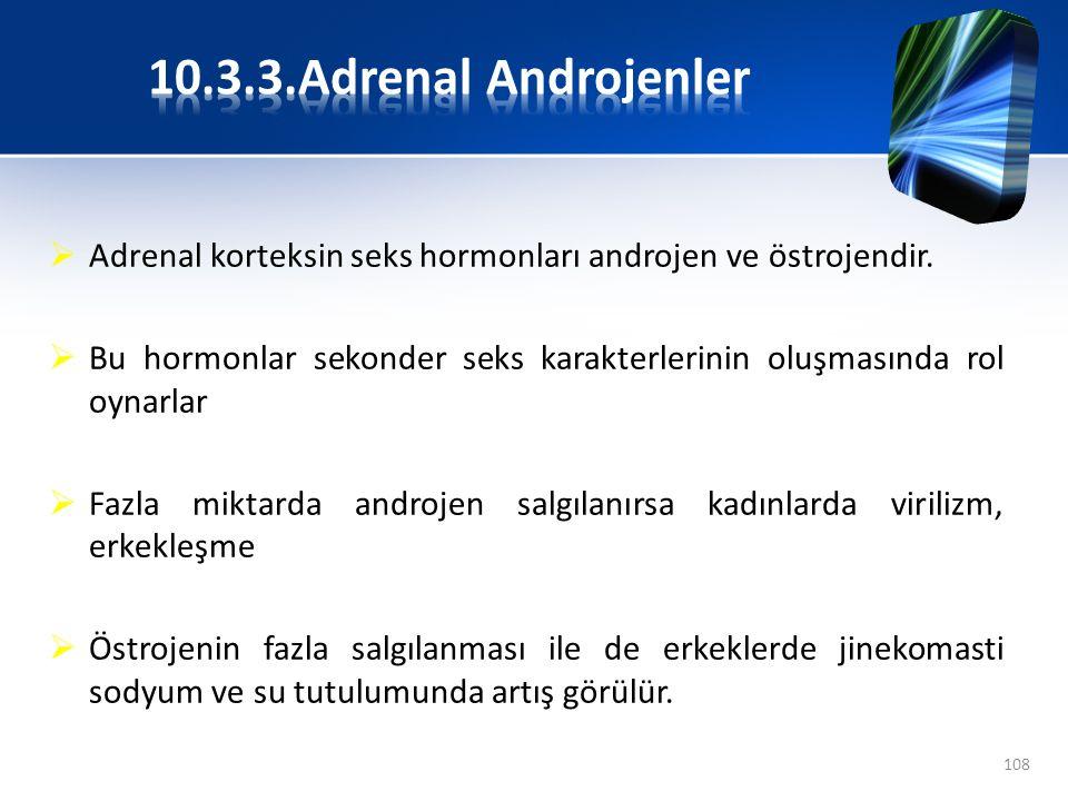  Adrenal korteksin seks hormonları androjen ve östrojendir.  Bu hormonlar sekonder seks karakterlerinin oluşmasında rol oynarlar  Fazla miktarda an