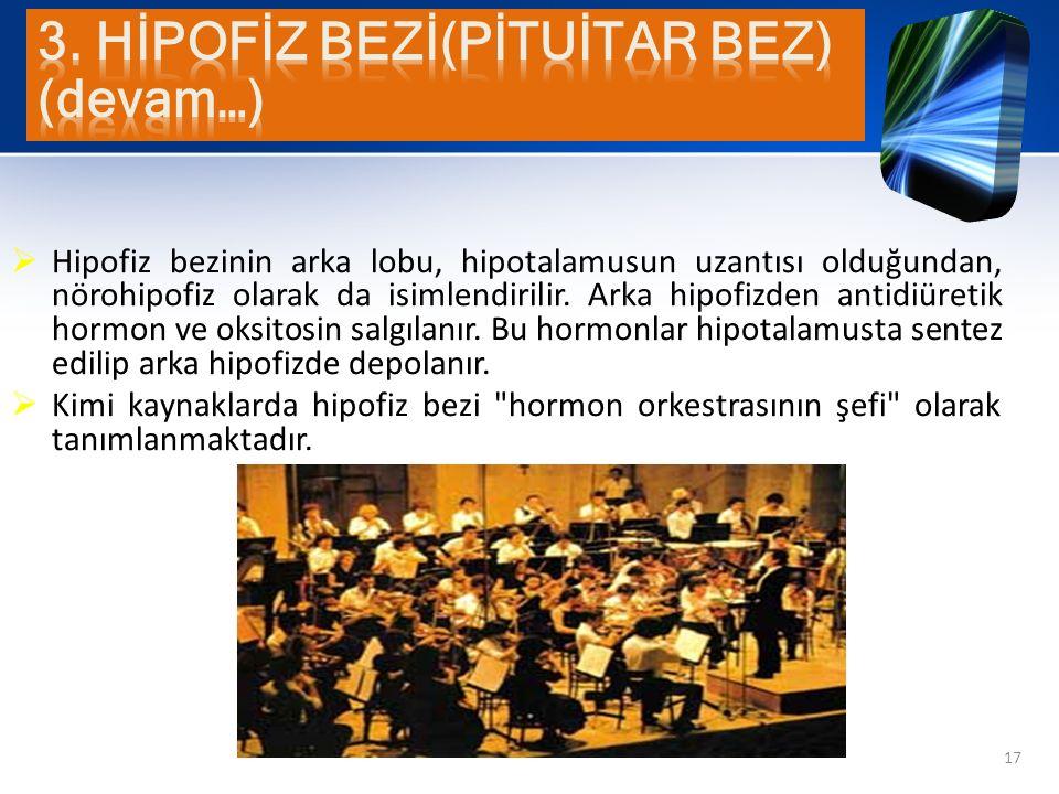  Hipofiz bezinin arka lobu, hipotalamusun uzantısı olduğundan, nörohipofiz olarak da isimlendirilir. Arka hipofizden antidiüretik hormon ve oksitosin