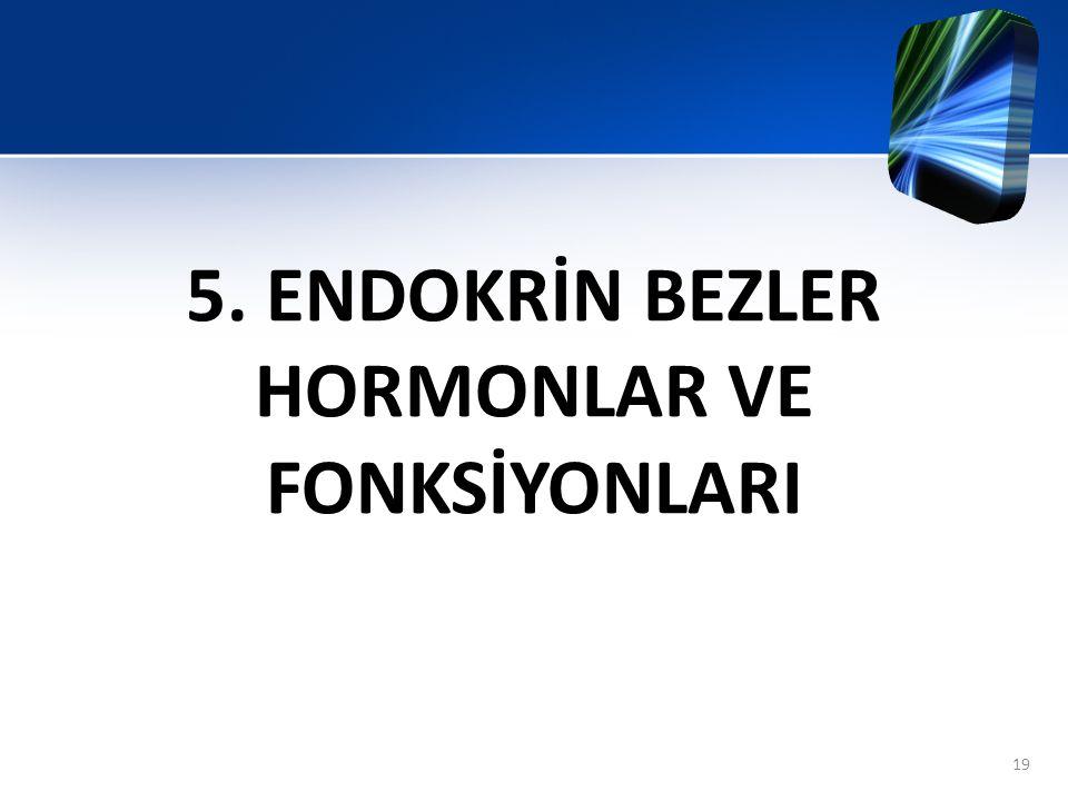 5. ENDOKRİN BEZLER HORMONLAR VE FONKSİYONLARI 19