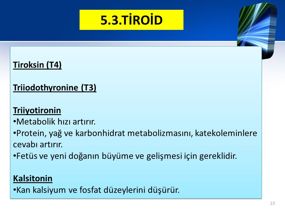Tiroksin (T4) Triiodothyronine (T3) Triiyotironin Metabolik hızı artırır. Protein, yağ ve karbonhidrat metabolizmasını, katekoleminlere cevabı artırır