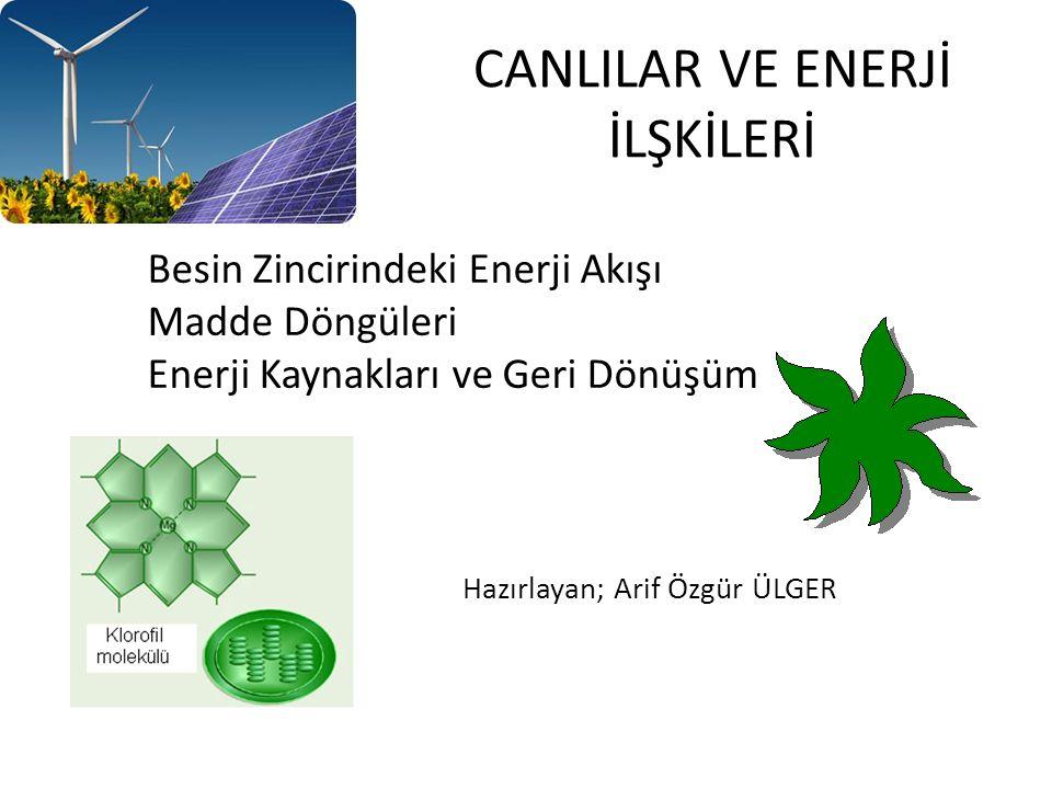 CANLILAR VE ENERJİ İLŞKİLERİ Besin Zincirindeki Enerji Akışı Madde Döngüleri Enerji Kaynakları ve Geri Dönüşüm Hazırlayan; Arif Özgür ÜLGER