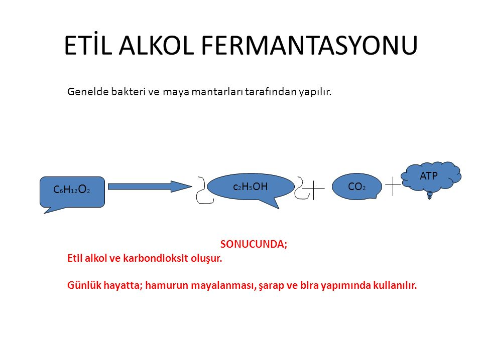 C 6 H 12 O 2 c 2 H 5 OH CO 2 ATP ETİL ALKOL FERMANTASYONU SONUCUNDA; Etil alkol ve karbondioksit oluşur. Günlük hayatta; hamurun mayalanması, şarap ve