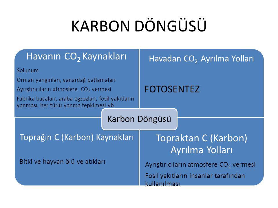 KARBON DÖNGÜSÜ Havanın CO2 Kaynakları Solunum Orman yangınları, yanardağ patlamaları Ayrıştırıcıların atmosfere CO 2 vermesi Fabrika bacaları, araba e