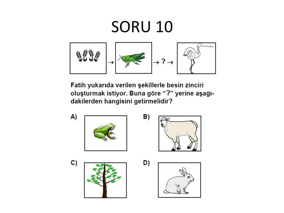 SORU 10