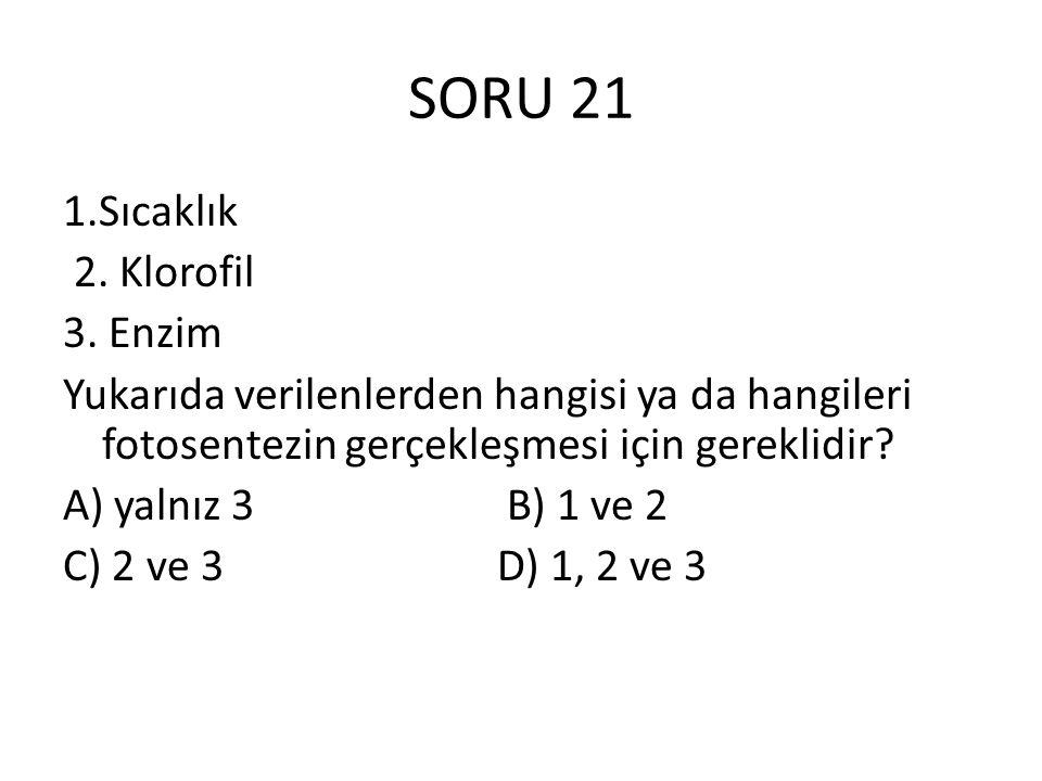 SORU 21 1.Sıcaklık 2. Klorofil 3. Enzim Yukarıda verilenlerden hangisi ya da hangileri fotosentezin gerçekleşmesi için gereklidir? A) yalnız 3 B) 1 ve