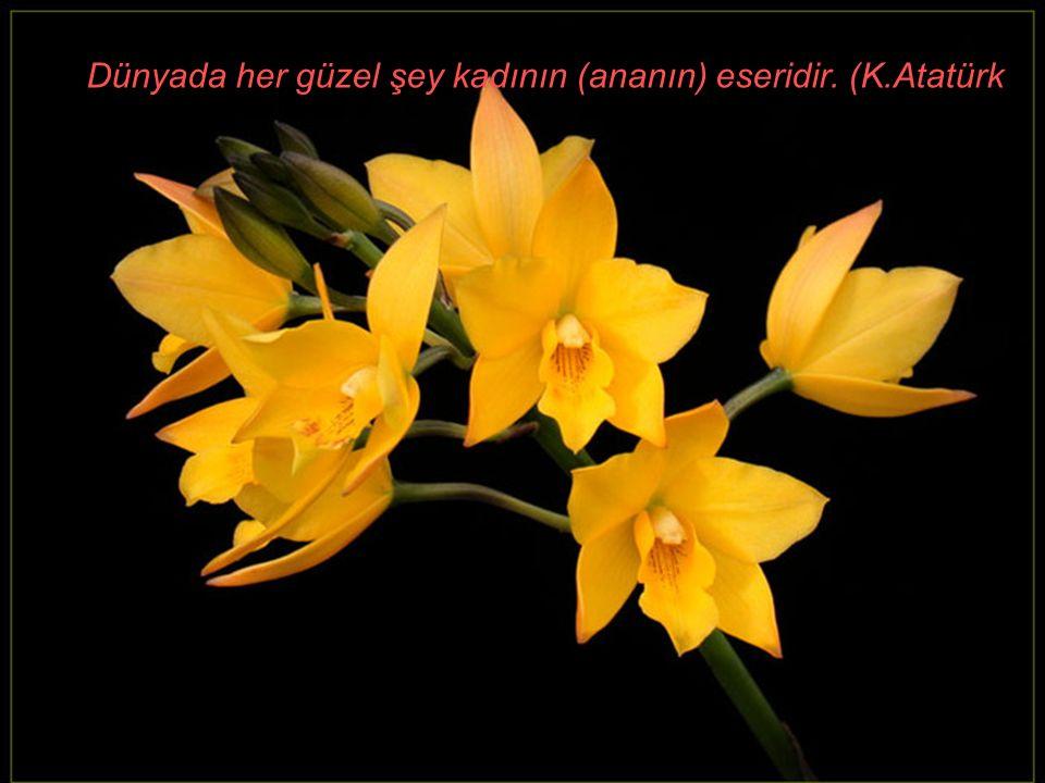 Dünyada her güzel şey kadının (ananın) eseridir. (K.Atatürk )