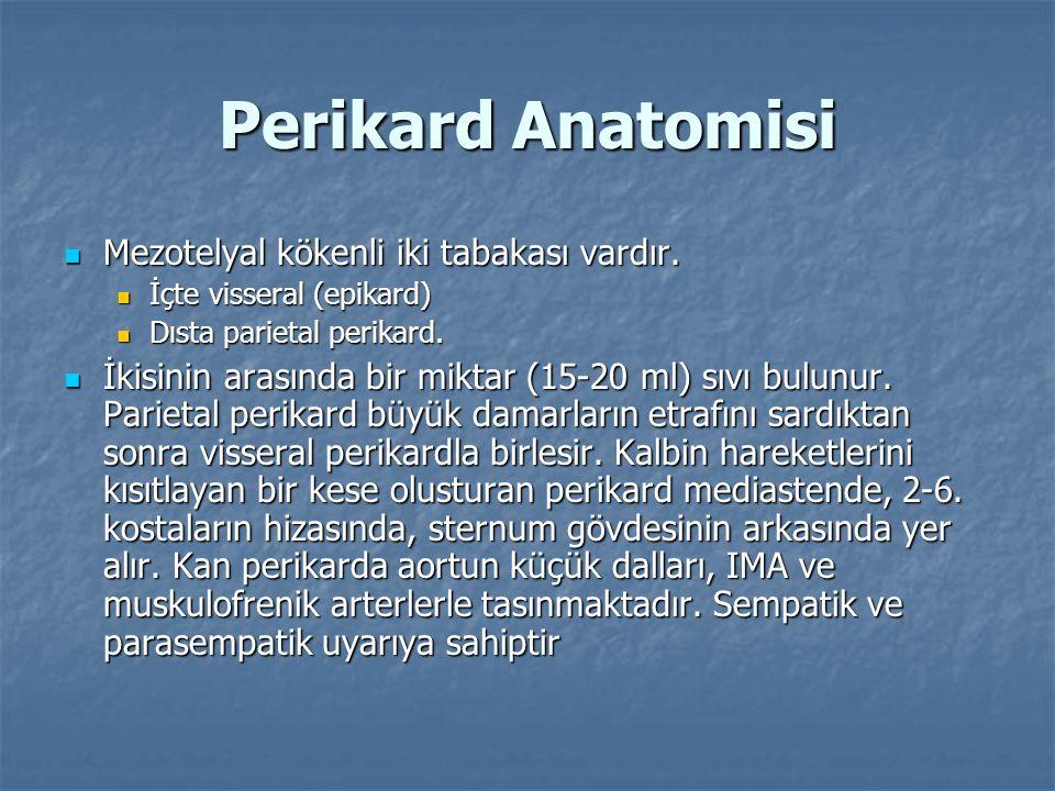 Perikard Anatomisi Mezotelyal kökenli iki tabakası vardır. Mezotelyal kökenli iki tabakası vardır. İçte visseral (epikard) İçte visseral (epikard) Dıs
