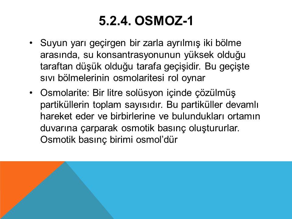 5.2.4. OSMOZ-1 Suyun yarı geçirgen bir zarla ayrılmış iki bölme arasında, su konsantrasyonunun yüksek olduğu taraftan düşük olduğu tarafa geçişidir. B