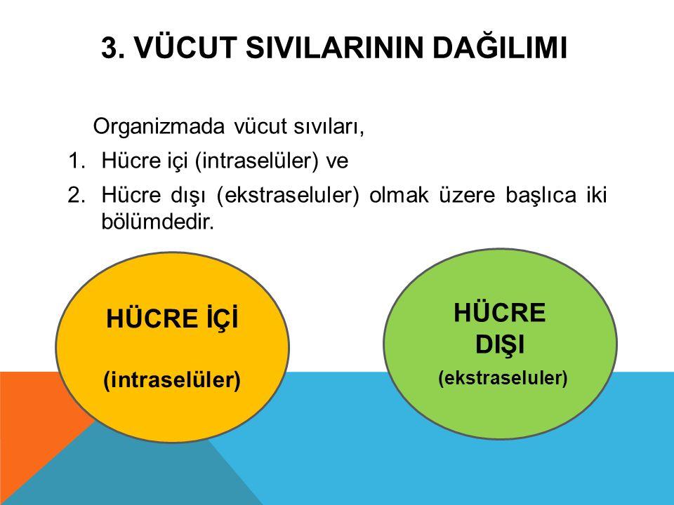 3. VÜCUT SIVILARININ DAĞILIMI Organizmada vücut sıvıları, 1.Hücre içi (intraselüler) ve 2.Hücre dışı (ekstraseluler) olmak üzere başlıca iki bölümdedi