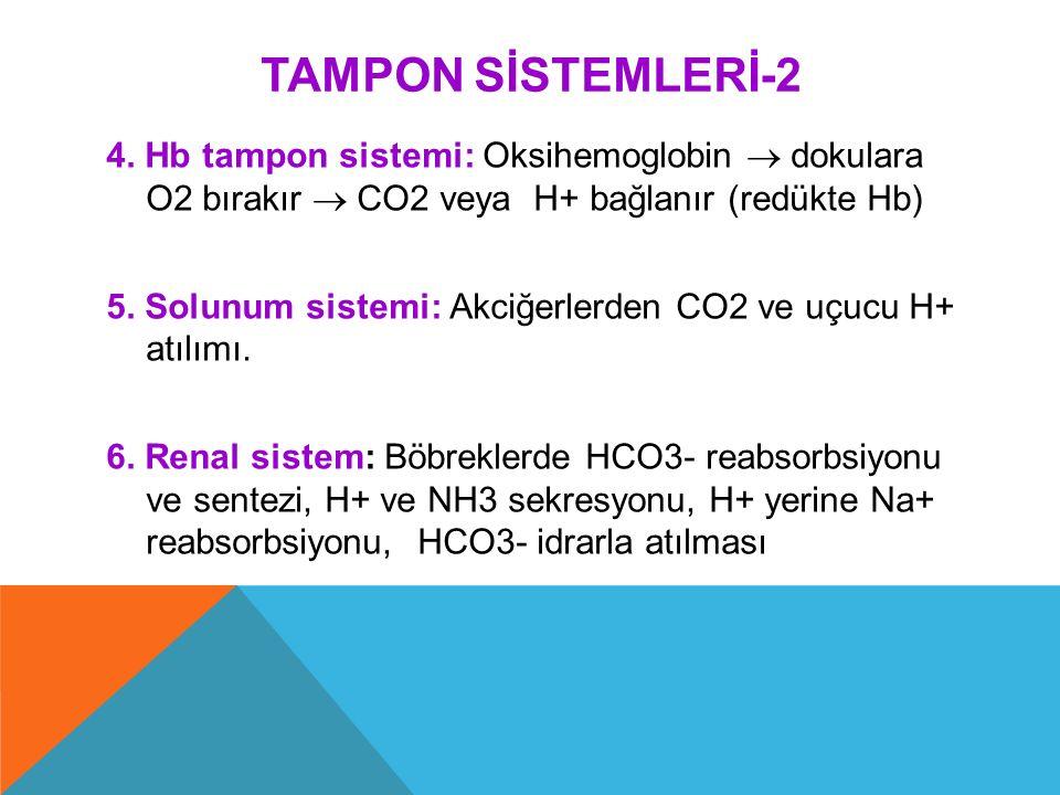 TAMPON SİSTEMLERİ-2 4. Hb tampon sistemi: Oksihemoglobin  dokulara O2 bırakır  CO2 veya H+ bağlanır (redükte Hb) 5. Solunum sistemi: Akciğerlerden C