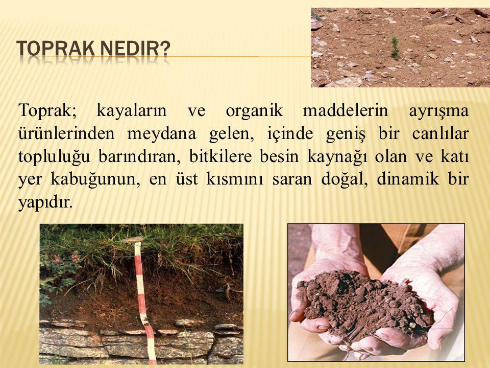 Toprak; kayaların ve organik maddelerin ayrışma ürünlerinden meydana gelen, içinde geniş bir canlılar topluluğu barındıran, bitkilere besin kaynağı olan ve katı yer kabuğunun, en üst kısmını saran doğal, dinamik bir yapıdır.