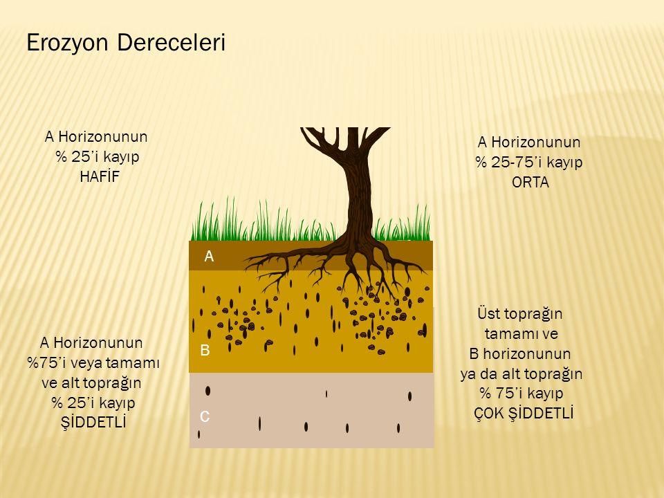 A Horizonunun % 25'i kayıp HAFİF A Horizonunun % 25-75'i kayıp ORTA A Horizonunun %75'i veya tamamı ve alt toprağın % 25'i kayıp ŞİDDETLİ Üst toprağın tamamı ve B horizonunun ya da alt toprağın % 75'i kayıp ÇOK ŞİDDETLİ Erozyon Dereceleri A B C