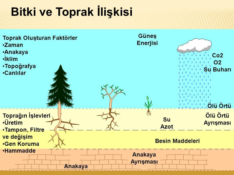 Nedenler  Ormanlık alanların yokedilmesi  Overgrazing  Toprak erezyonu  Sulama alanların kötü drenajı  Su kaynakların aşırı derecede kullanımı  Çölleşmenin ana semptonları:yeraltısu tablasındaki düşüş, toprağın ve yüzeye yakın toprak suyunun tuzlanması (salinizasyonu), nehirlerdeki yüzey sularının, göllerin dağılımındaki azalma, doğal olmayan yüksek oranlardaki toprak erozyonu, dogal bitkisel örtüye zarar.