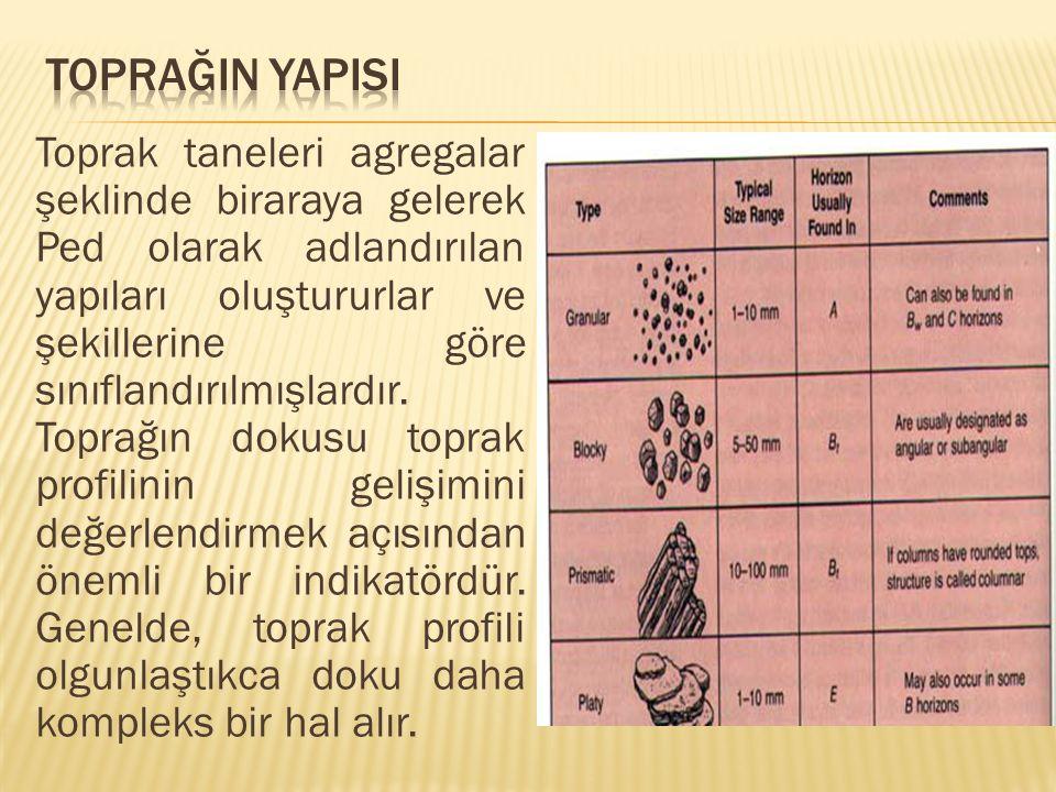  Birçok toprak özelliği ve toprağın oluşumu hakkında önemli ip uçları verir.