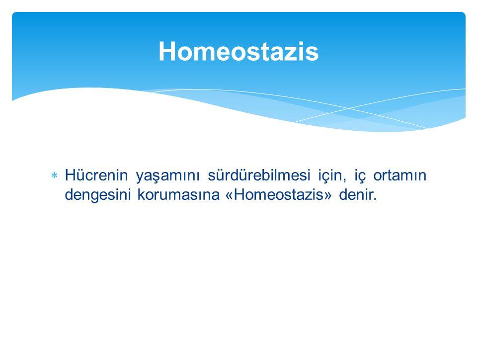  Hücrenin yaşamını sürdürebilmesi için, iç ortamın dengesini korumasına «Homeostazis» denir. Homeostazis