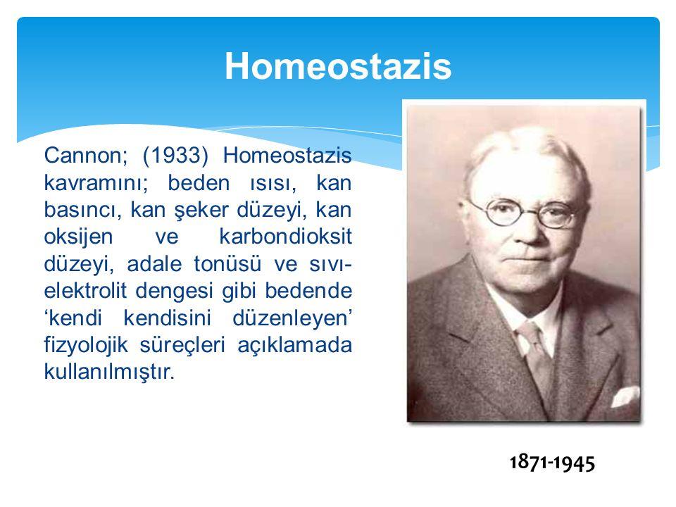 Cannon; (1933) Homeostazis kavramını; beden ısısı, kan basıncı, kan şeker düzeyi, kan oksijen ve karbondioksit düzeyi, adale tonüsü ve sıvı- elektroli