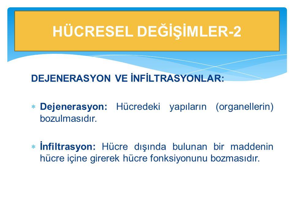DEJENERASYON VE İNFİLTRASYONLAR:  Dejenerasyon: Hücredeki yapıların (organellerin) bozulmasıdır.  İnfiltrasyon: Hücre dışında bulunan bir maddenin h