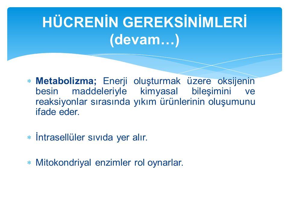  Metabolizma; Enerji oluşturmak üzere oksijenin besin maddeleriyle kimyasal bileşimini ve reaksiyonlar sırasında yıkım ürünlerinin oluşumunu ifade ed