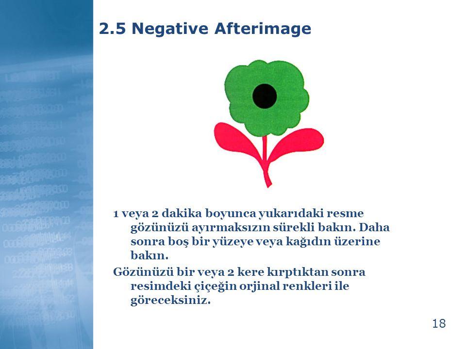 18 2.5 Negative Afterimage 1 veya 2 dakika boyunca yukarıdaki resme gözünüzü ayırmaksızın sürekli bakın. Daha sonra boş bir yüzeye veya kağıdın üzerin