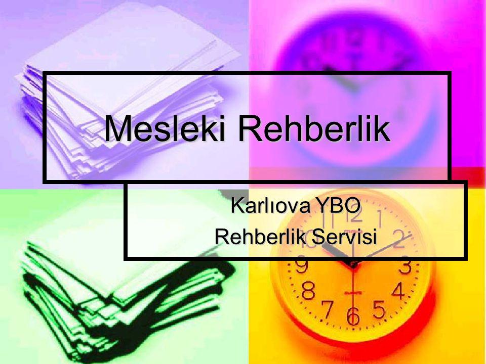 Mesleki Rehberlik Karlıova YBO Rehberlik Servisi