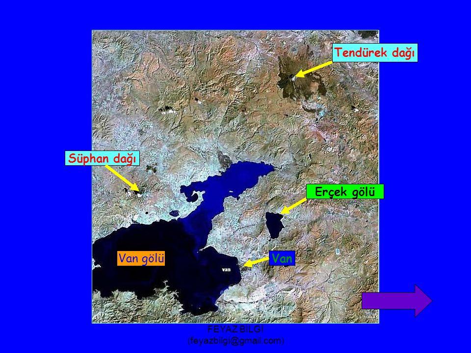 FEYAZ BİLGİ (feyazbilgi@gmail.com) Deniz seviyesinden yükseklikleri aynı olan noktaları birleştirdiği düşünülen eğrilere eşyükselti eğrisi adı verilir.