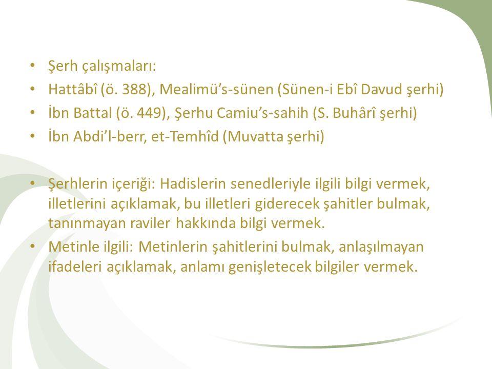 Şerh çalışmaları: Hattâbî (ö. 388), Mealimü's-sünen (Sünen-i Ebî Davud şerhi) İbn Battal (ö. 449), Şerhu Camiu's-sahih (S. Buhârî şerhi) İbn Abdi'l-be