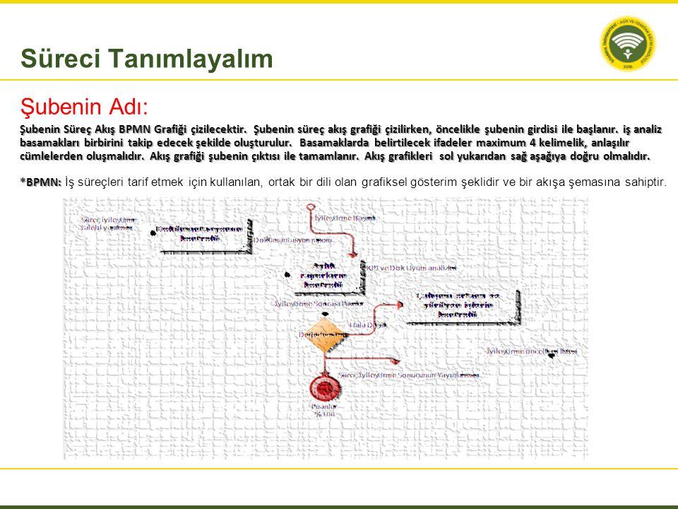 Şubenin Süreç Akış BPMN Grafiği çizilecektir. Şubenin süreç akış grafiği çizilirken, öncelikle şubenin girdisi ile başlanır. iş analiz basamakları bir