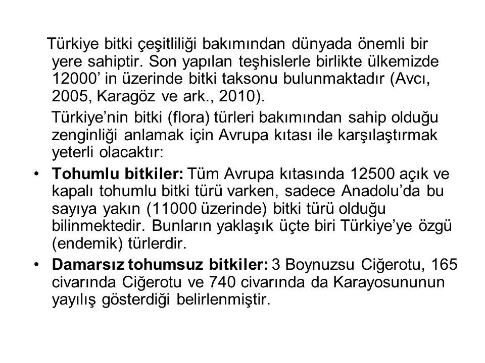 Türkiye bitki çeşitliliği bakımından dünyada önemli bir yere sahiptir. Son yapılan teşhislerle birlikte ülkemizde 12000' in üzerinde bitki taksonu bul