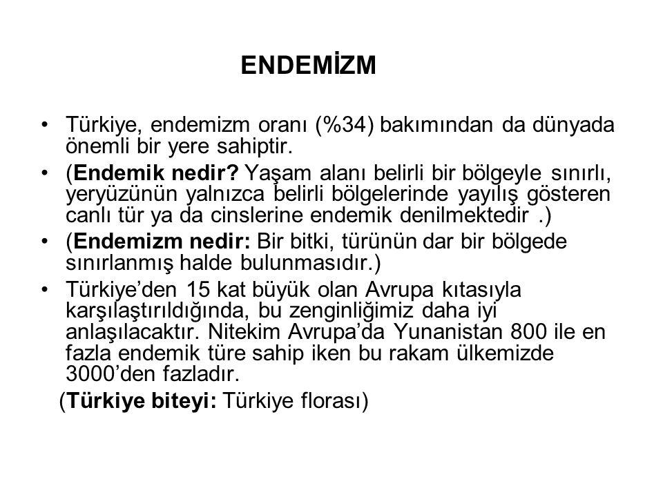 ENDEMİZM Türkiye, endemizm oranı (%34) bakımından da dünyada önemli bir yere sahiptir. (Endemik nedir? Yaşam alanı belirli bir bölgeyle sınırlı, yeryü