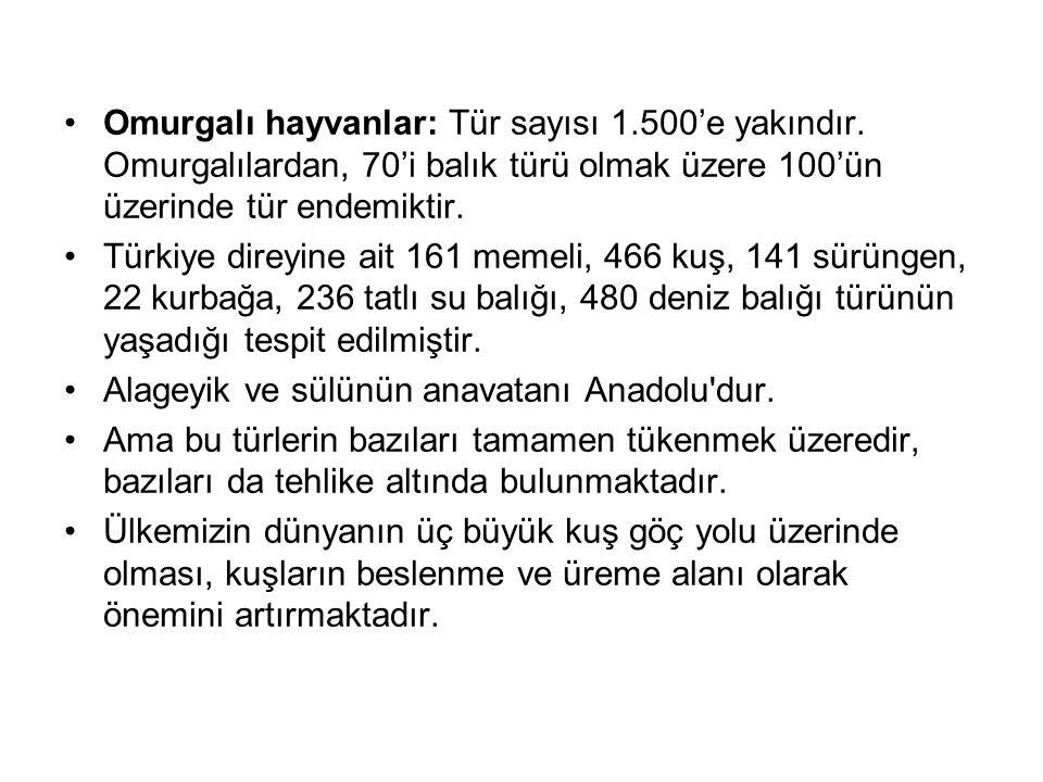 Omurgalı hayvanlar: Tür sayısı 1.500'e yakındır. Omurgalılardan, 70'i balık türü olmak üzere 100'ün üzerinde tür endemiktir. Türkiye direyine ait 161