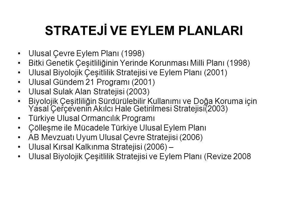 STRATEJİ VE EYLEM PLANLARI Ulusal Çevre Eylem Planı (1998) Bitki Genetik Çeşitliliğinin Yerinde Korunması Milli Planı (1998) Ulusal Biyolojik Çeşitlil