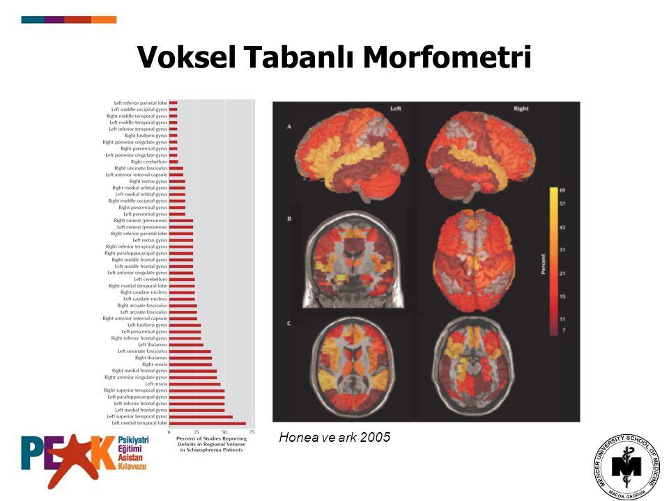 Voksel Tabanlı Morfometri Honea ve ark 2005