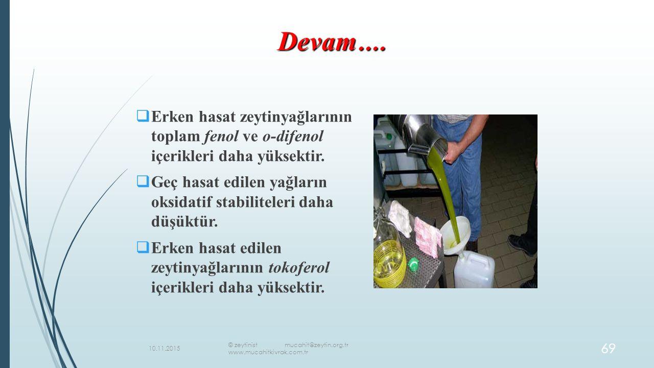  Erken hasat zeytinyağlarının toplam fenol ve o-difenol içerikleri daha yüksektir.