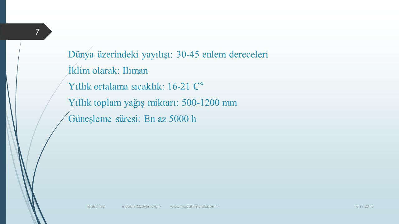 10.11.2015 © zeytinist mucahit@zeytin.org.tr www.mucahitkivrak.com.tr 7 Dünya üzerindeki yayılışı: 30-45 enlem dereceleri İklim olarak: Ilıman Yıllık ortalama sıcaklık: 16-21 C° Yıllık toplam yağış miktarı: 500-1200 mm Güneşleme süresi: En az 5000 h